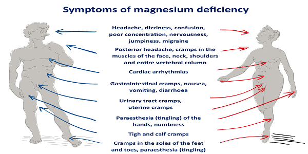 Image result for signs of magnesium deficiency
