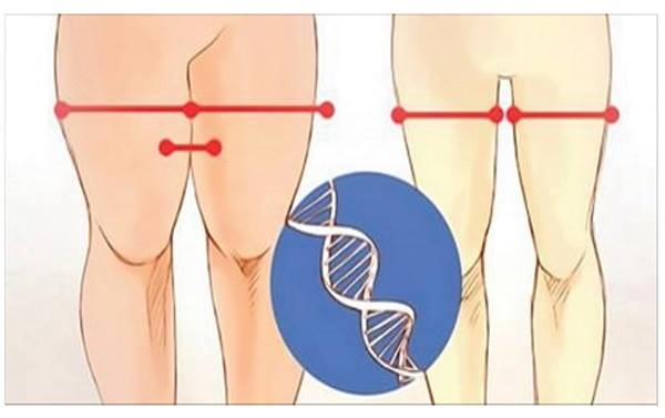 Image result for Only 12 Minutes a Day and Your Legs Will Be Irresistible! Exercises That Fit Everyone