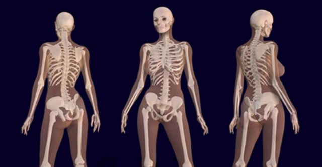 Image result for Scientist Reveal What Cannabis Does to Your Bones…