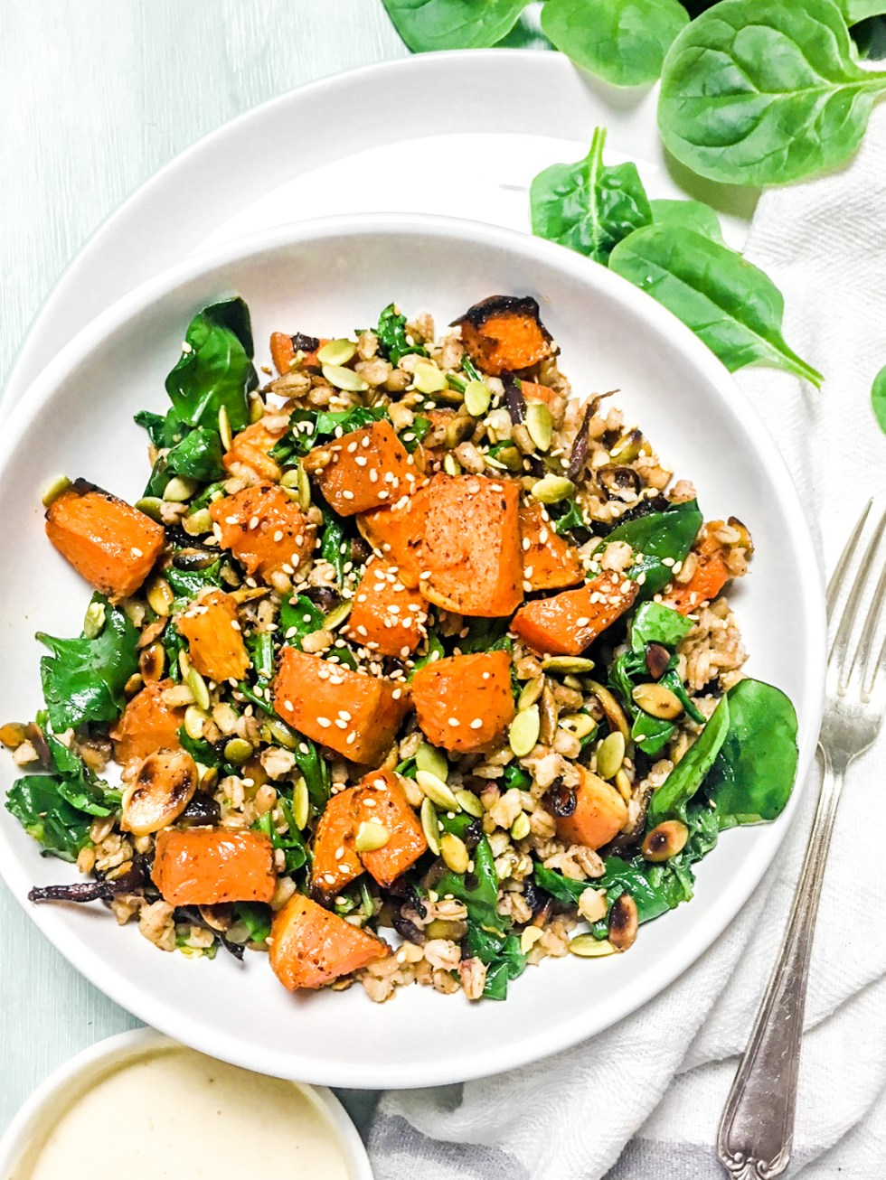 Barley Pumpkin Spinach Salad