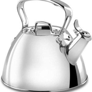 stainless steel tea kettle toxin free