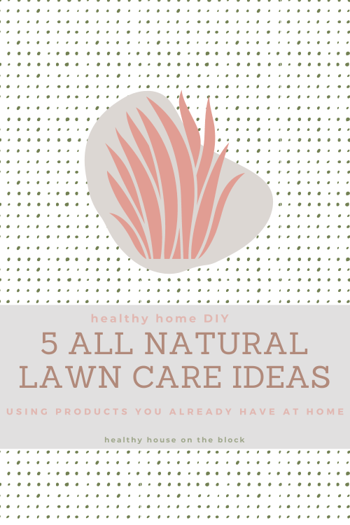 diy your lawn care with these 5 products you already have at home to promote a beautiful lawn without the use of pesticides