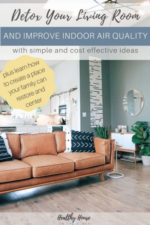 living room ideas on a budget for improving indoor air quality