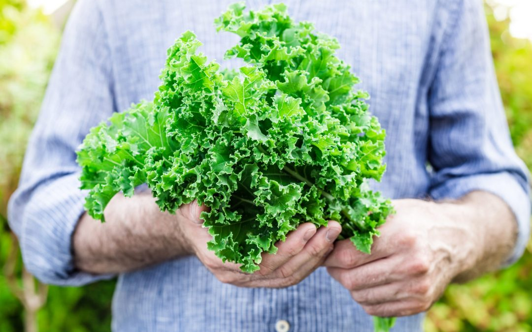 Benefits (and Risks) of Juicing Kale