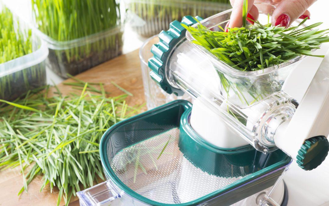 Juicing Wheatgrass: Benefits and Risks