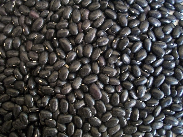 Black beans are approx. 0.42mg per cup