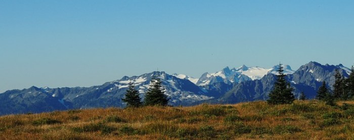 olympic-national-park-318066_640