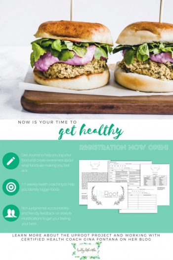 health coaching and diet journal with gina fontana from healthy little vittles