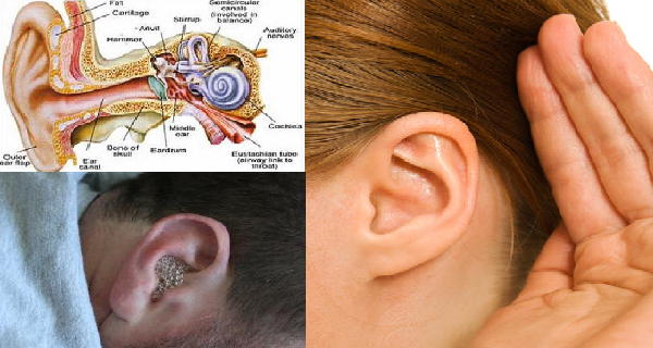 Say Goodbye To Ear Infection! Cure Ear infection In Just 1 Day 100% Naturally!
