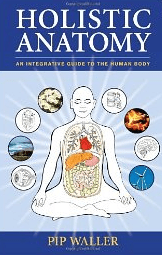 Holistic Anatomy Book Cover