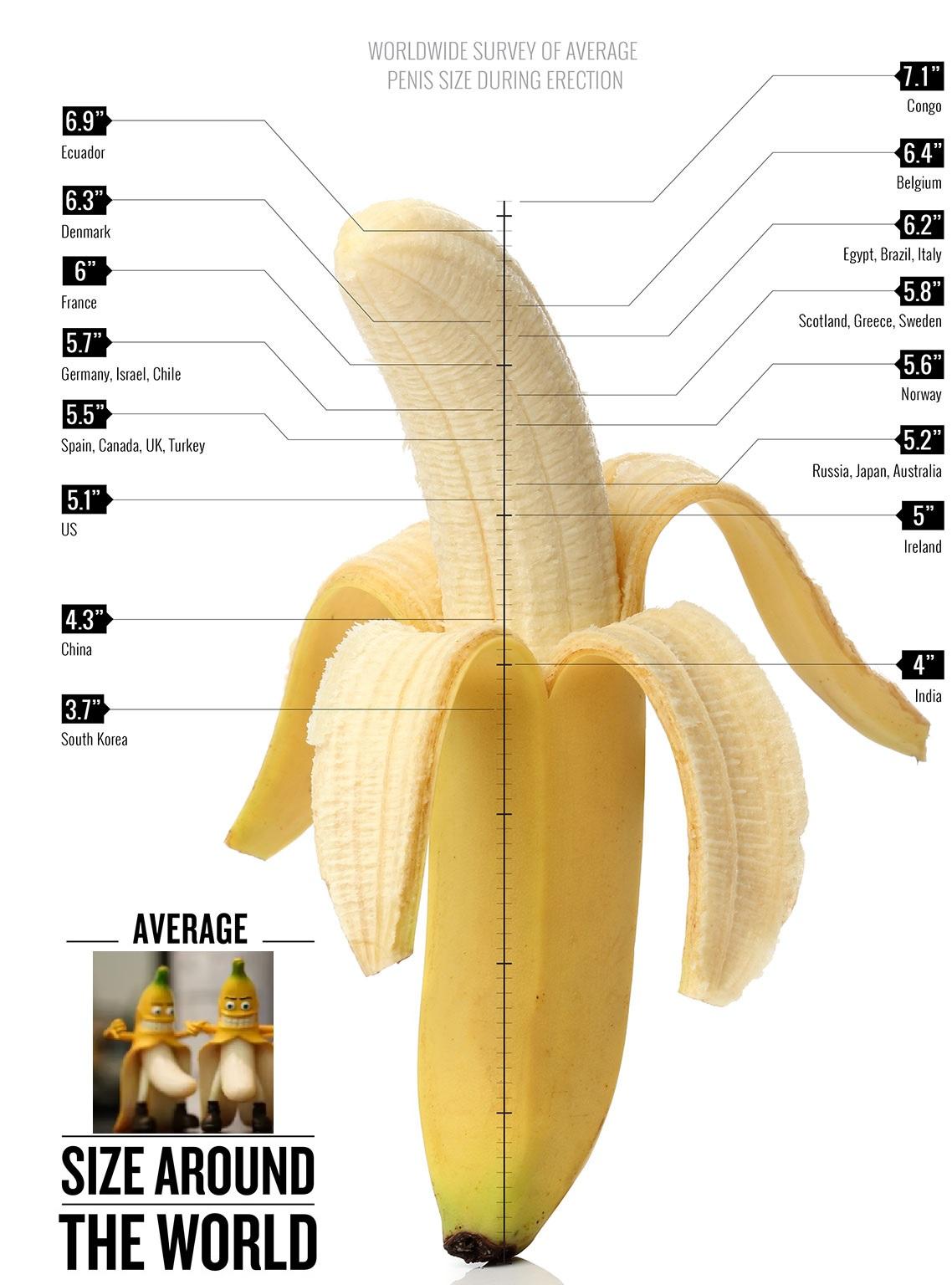 Penis Size Pics
