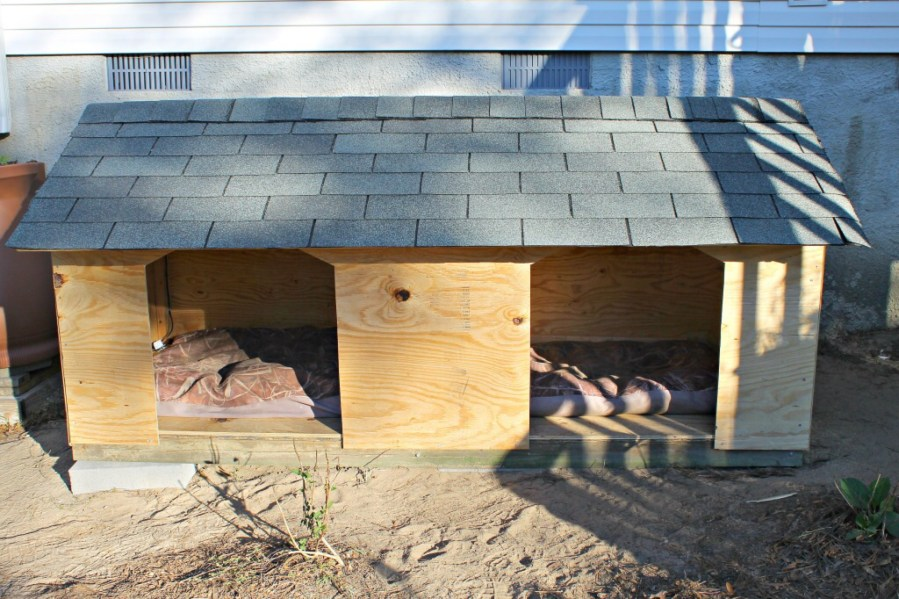 5 Droolworthy DIY Dog House Plans   Healthy Paws DIY double dog house for large dogs