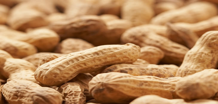 Roasted Peanuts and Acne | Anti Blemish Diet