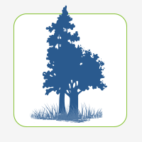 Forests and Freshwater Habitat