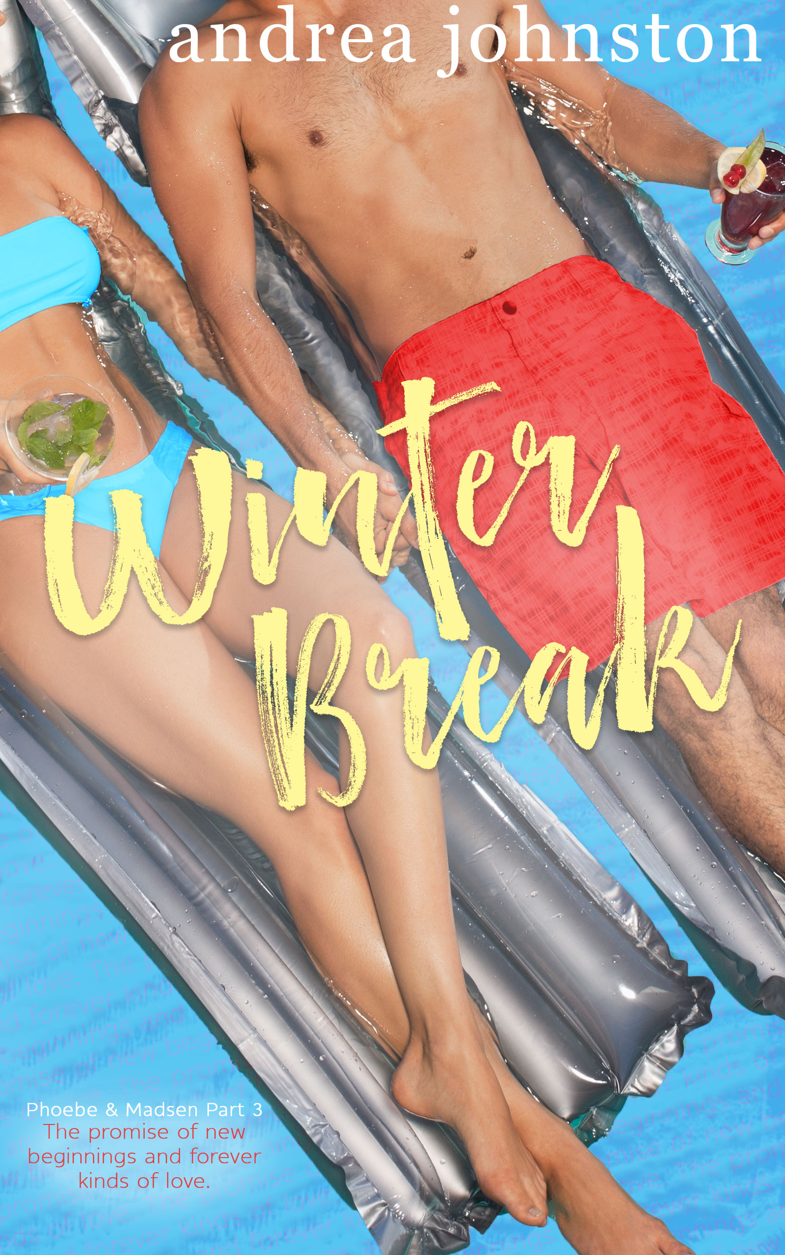 Excerpt | Winter Break by Andrea Johnston