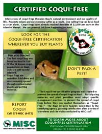coqui free flyer