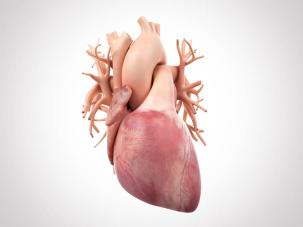 Arsenic in drinking water may damage the heart | American Heart Association