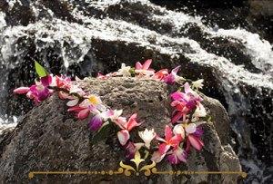 Hawaiian Escape Scented Candles