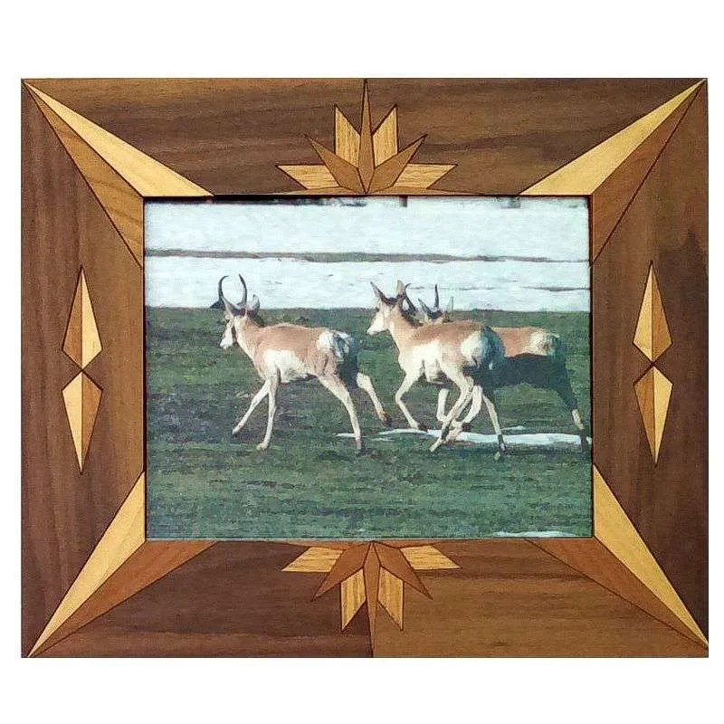 Antelope photograph in handcrafted hardwood frame.
