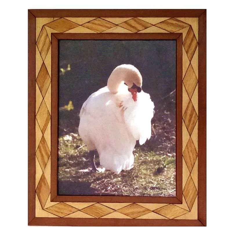Trumpeter swan photograph in handcrafted hardwood frame.