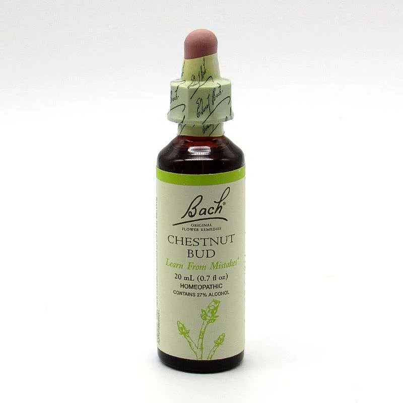 Bach Flower Remedy - Chestnut Bud
