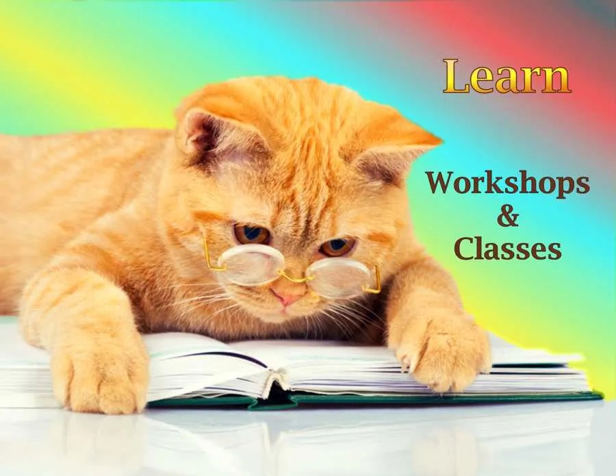 Learn - Classes and Workshops
