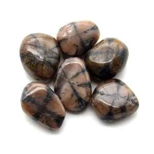 Tumbled chiastolite gemstones.