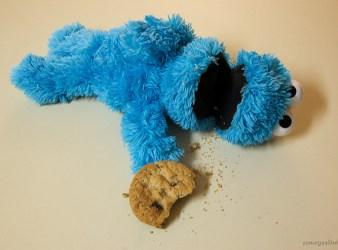 website cookie monster