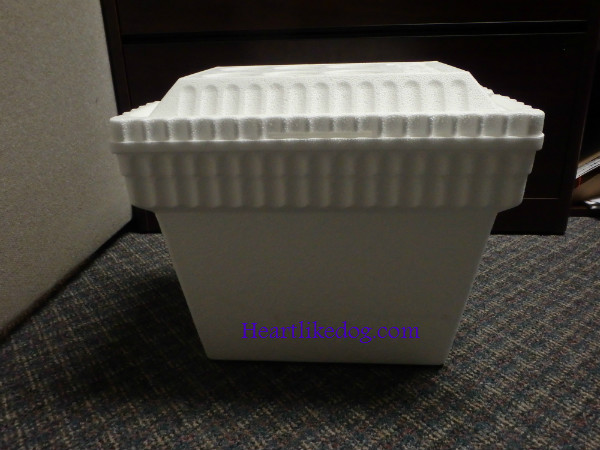 Styrofoam Coolers Not Just For Beer