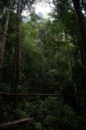 Bukit Batikap Recce 2012