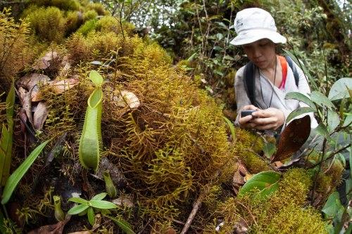 Maria Febe Gunung Bondang Expedition