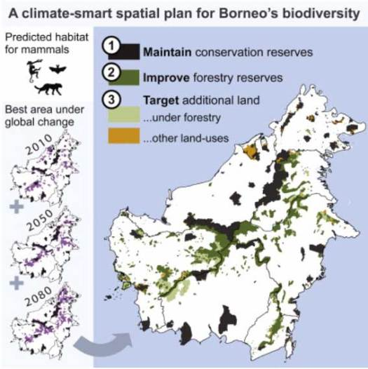 A climate-smart spatial plan for Borneo's biodiversity