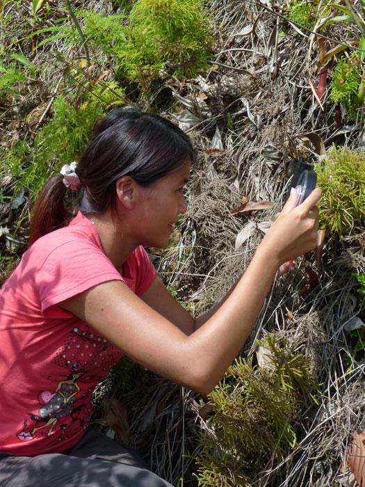 Sui Peng Heart of Borneo Volunteer