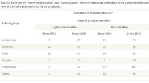 Numbers of species used in the Table 2 calculations of 'highly conservative' and 'conservative' modern extinction rates based on the IUCN Red List. For the highly conservative rates, only species verified as 'extinct' (EX) were included; for the conservative extinction rates, species in the categories 'extinct in the wild' (EW) and 'possibly extinct' (PE) were also included. Image and caption courtesy of Ceballos et al (2015)