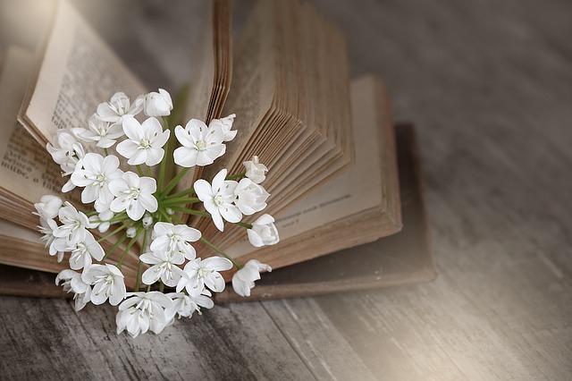 book-1356337_640