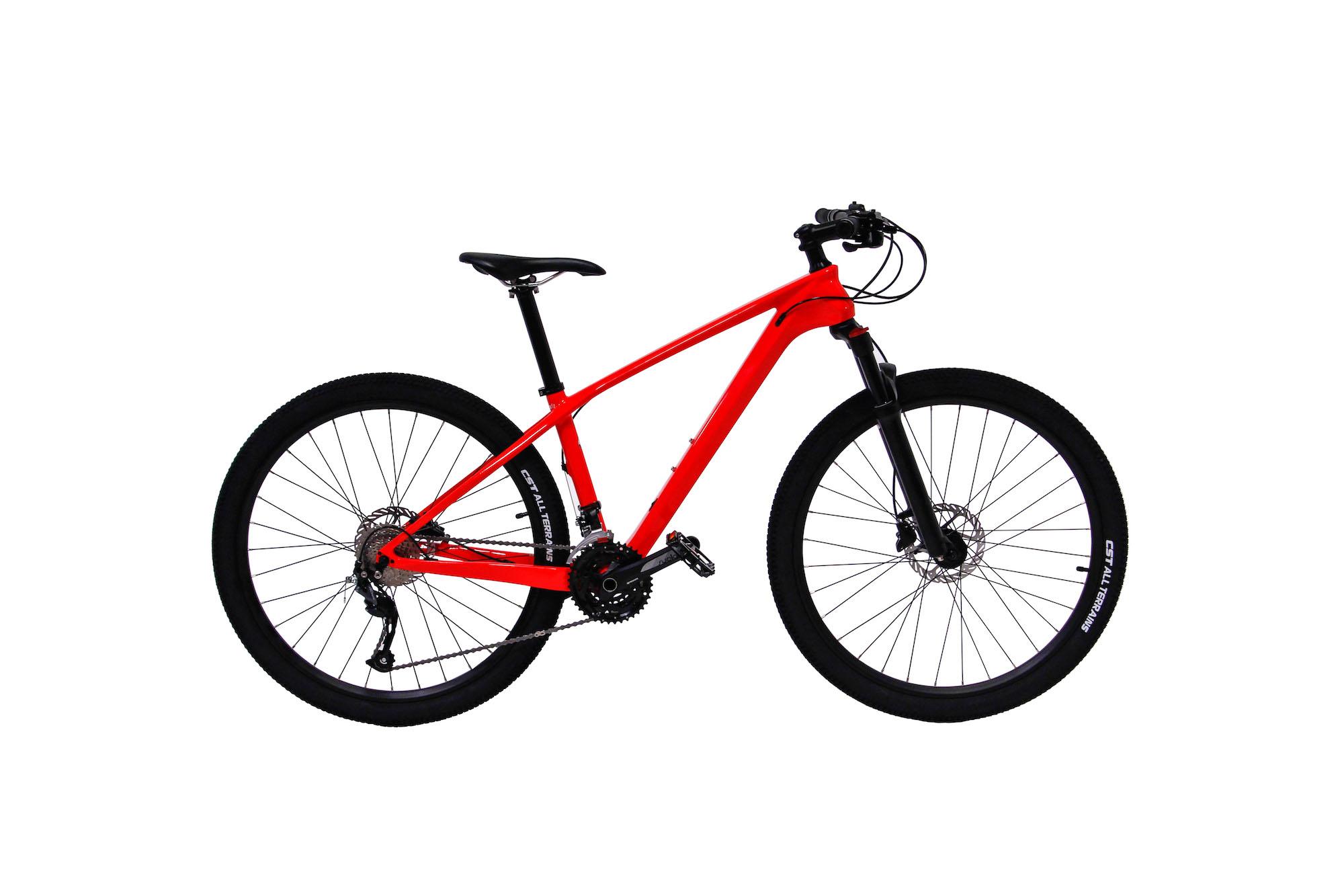 Model T carbon mountain bike