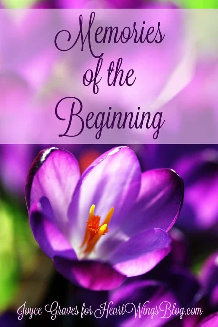 Memories of the Beginning by Joyce Graves