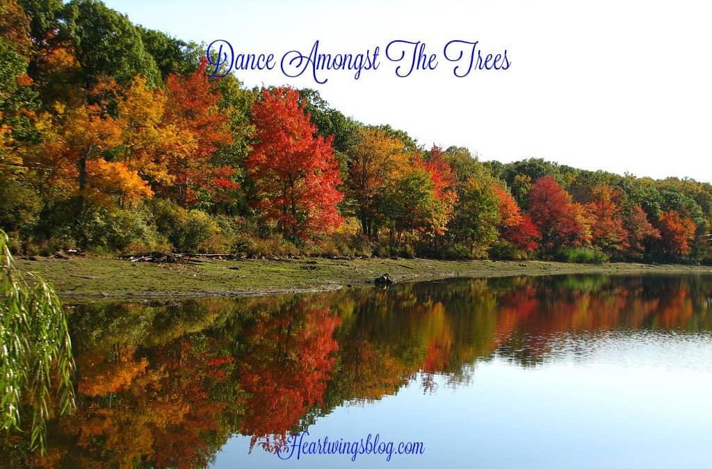 Dance Amongst The Trees
