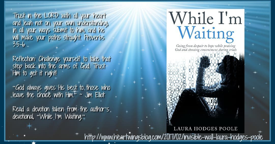The Invisible Wall by Laura Hodges Poole