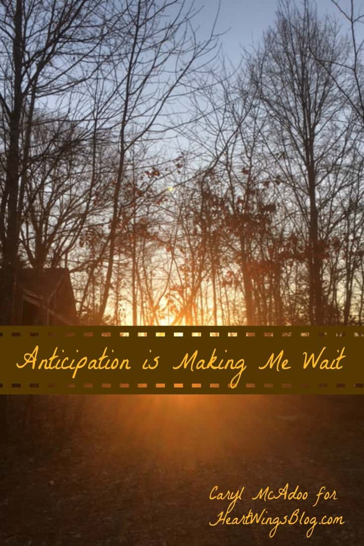 'Anticipation'. It's so true that it's making Caryl McAdoo wait. How? Find out at HeartWings Blog. God's timing is perfect!