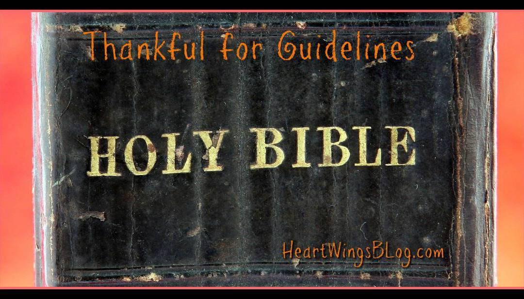 Thankful for Guidelines