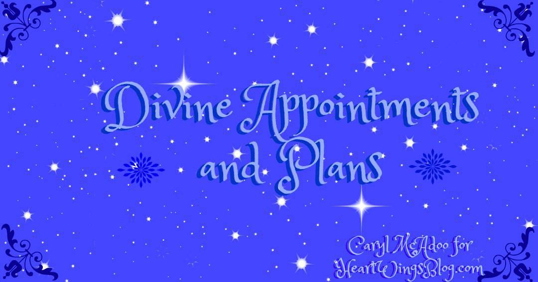 Divine Appointments and Plans and their Execution