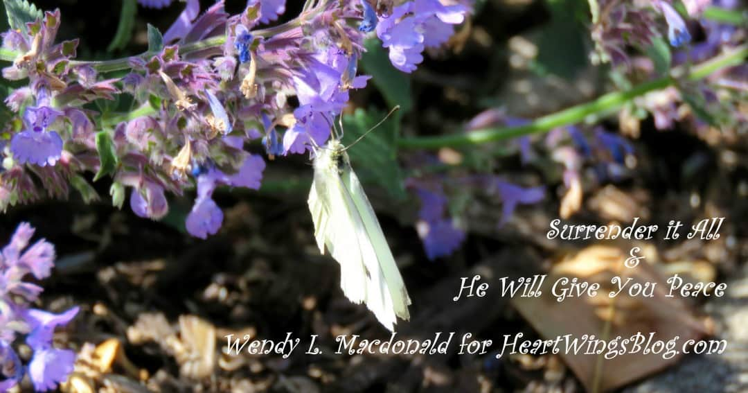 Surrender it All & He Will Give You Peace