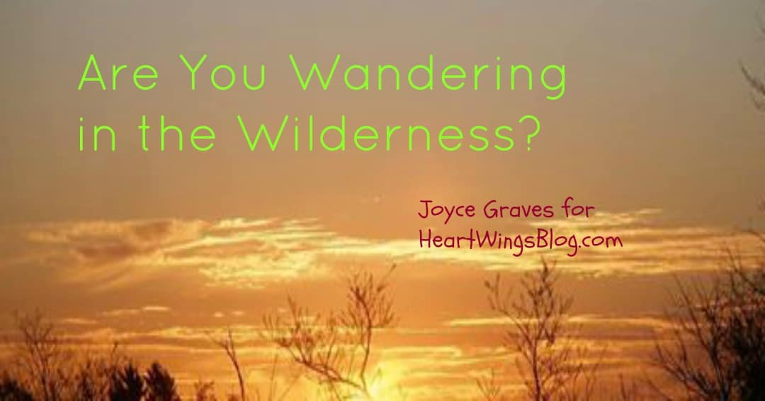 Are You Wandering in the Wilderness?