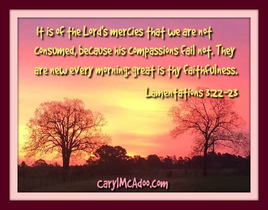 The Lord's mercies and compassions fail not. They are new every morning: great is thy faithfulness.