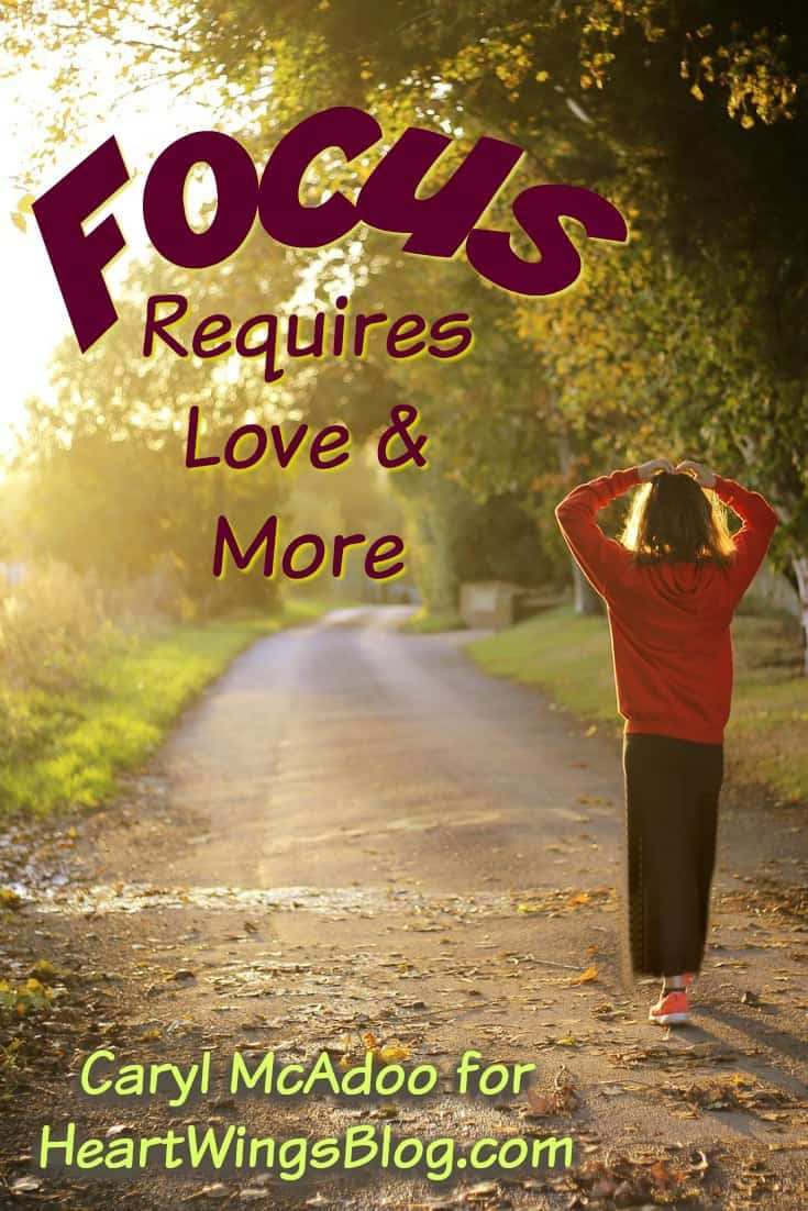Need halp with focus? Caryl McAdoo offers insight with Focus Requires Love & More at HeartWIngs Blog.