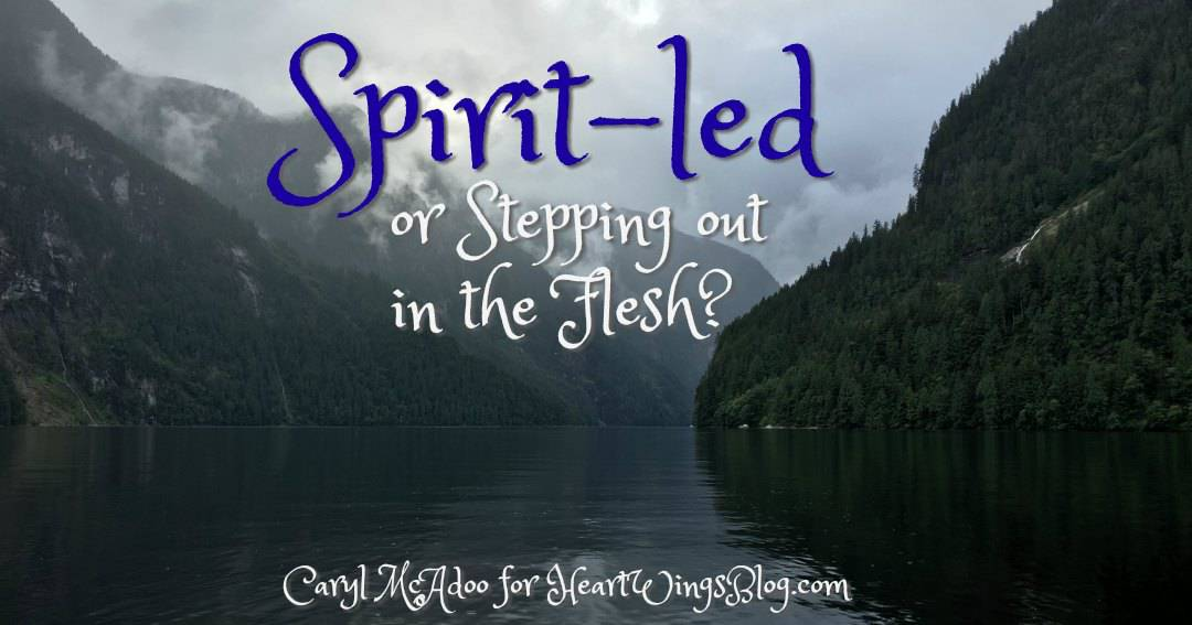 Spirit-led or Stepping out in the Flesh?