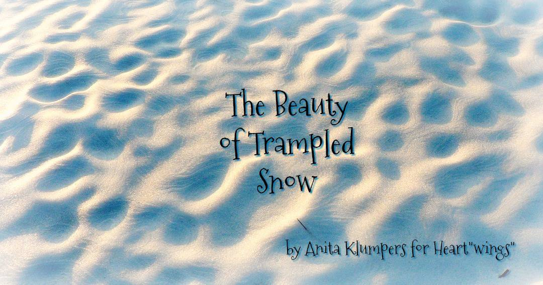 The Beauty of Trampled Snow