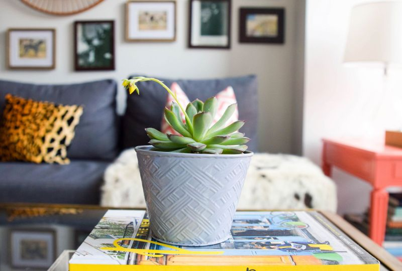 4 Tips on Making a House (or a Tiny Apartment) a Home