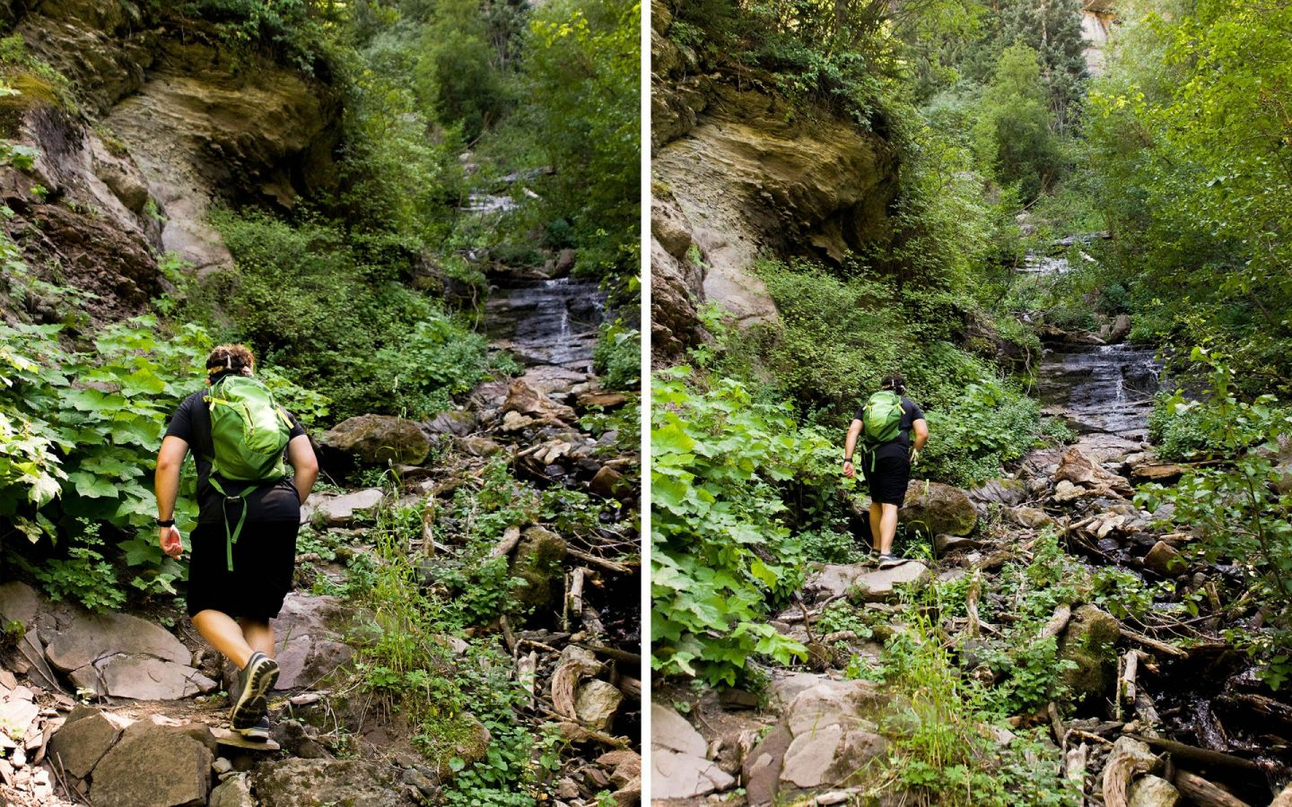 summer in vail - summer in colorado - hiking gore valley trail